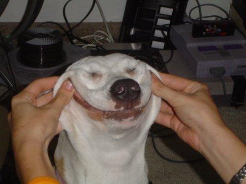 """Happy Face"""