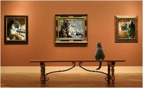 """Art gallery"""
