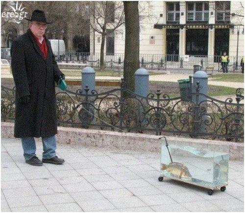 """""""fish walk"""""""